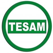 tesam-1